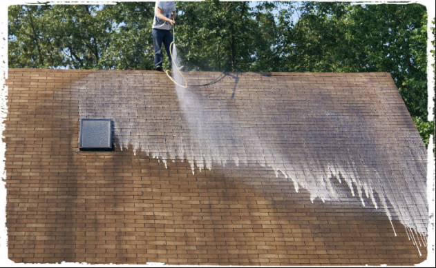 Apparatus And Procedure For Roof Cleaning In Auckland