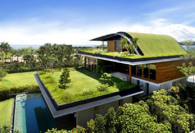 How to Work With a Top Green Roofing Service