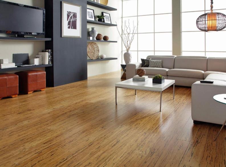 Laminate Wood Flooring Is A Good Idea For House Floors
