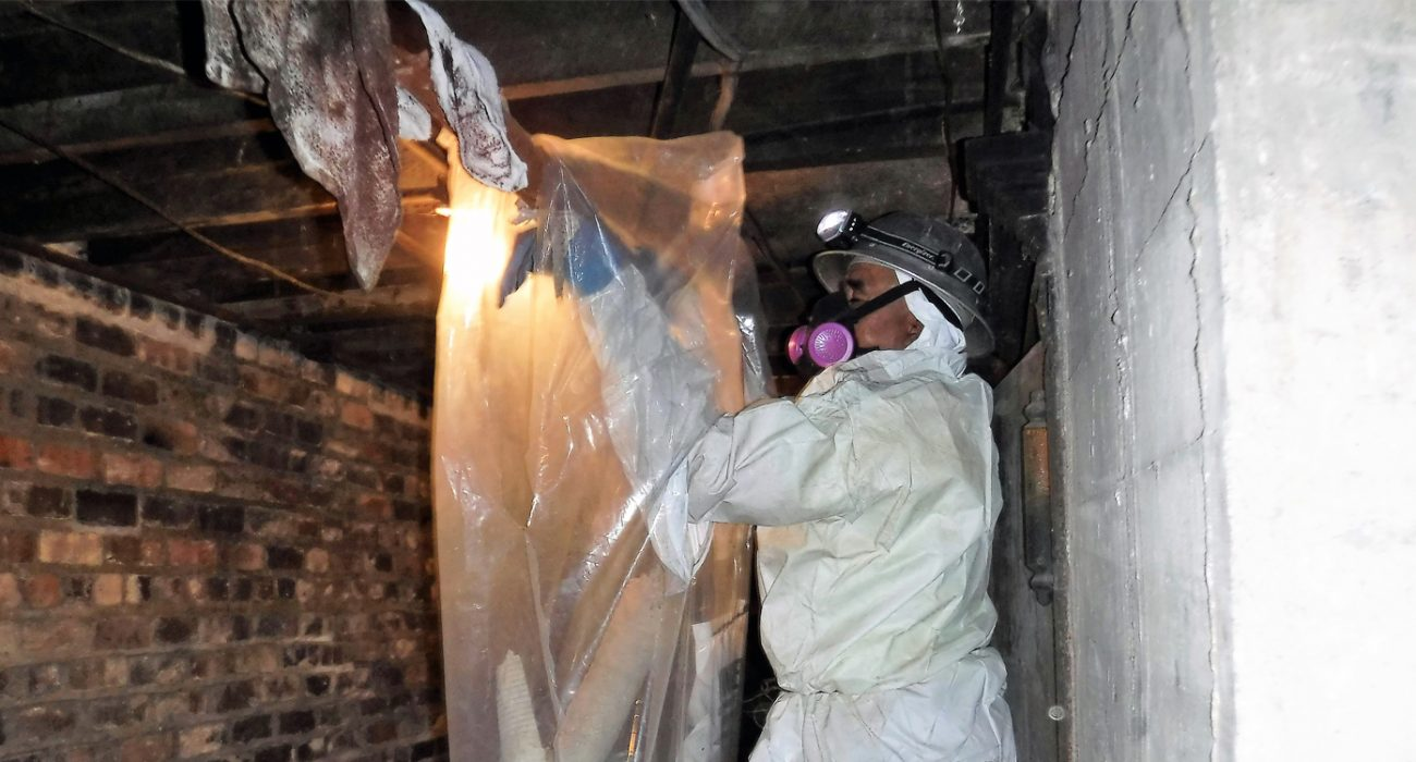 Hire Asbestos Removal Company – Better Safe than Sorry