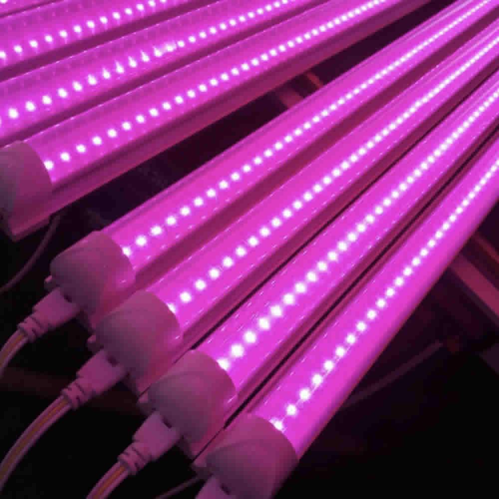 NZ grow lights